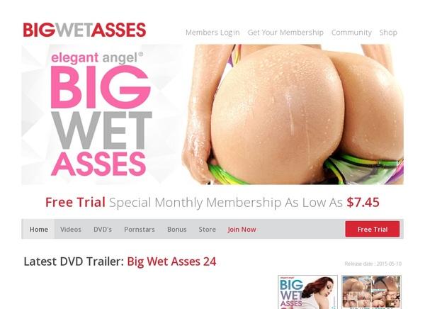 Big Wet Asses Password And Login