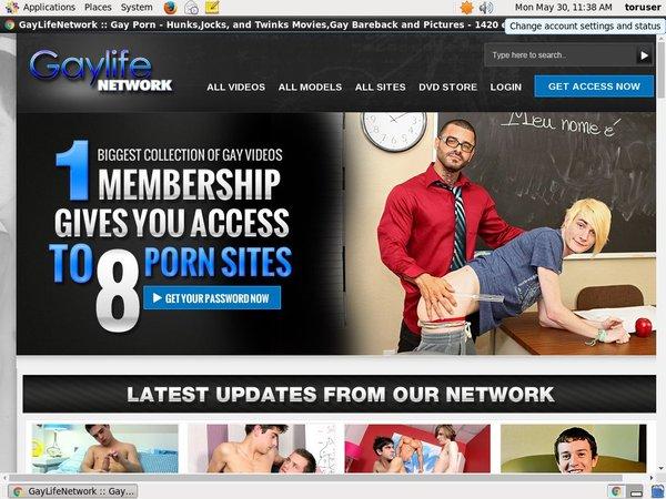Gay Life Network Xxx Video