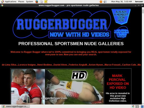 Rugger Bugger Daily Passwords