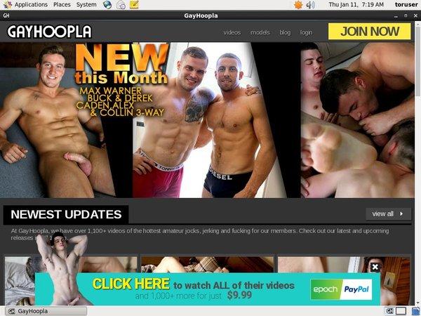 Gayhoopla Member Access
